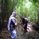 Ramsees and Bob in the bamboo forest